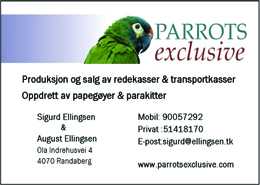sigurd-ellingsen-260-2015-cmyk